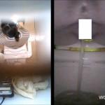そふといちば nozoki-com.com toilet48 大学洋式トイレ便器内&天井からの2カメ盗撮①
