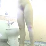 そふといちば わあるど 海の洋式トイレを2カメラで撮ってみた!17急いで入室中腰放尿大音量ラスト残尿?