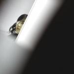 2020一作目の淑女シリーズ 全員清楚感満点【美しい日本の未来220】