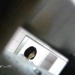 幻08 がっちり盗撮!!ショートカットで笑顔が素敵な・・・追い撮りトイレ盗撮